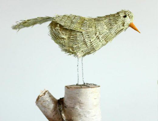 Buchvogel